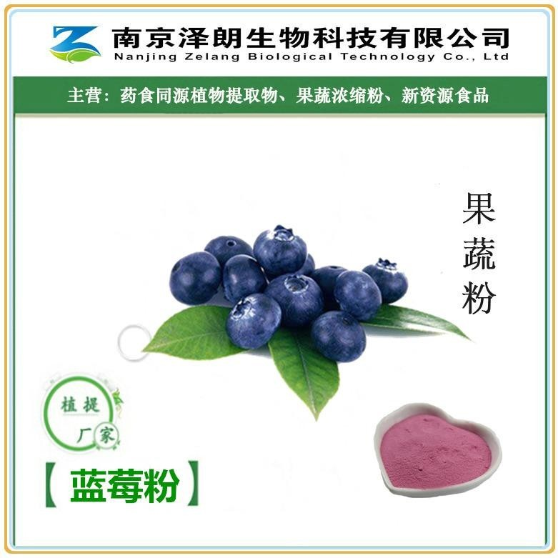 蓝莓粉厂家
