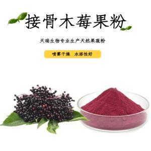 接骨木莓果粉 厂家直供 接骨木莓果汁粉