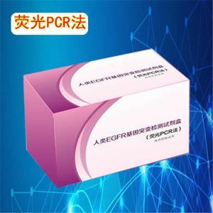 新生隐球菌PCR试剂盒 产品图片