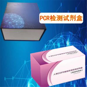 乳酸杆菌属通用染料法荧光定量PCR试剂盒 产品图片