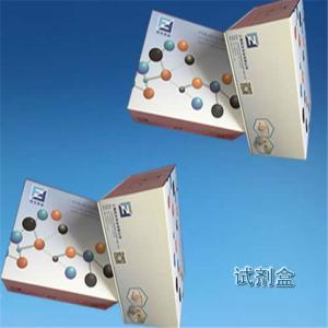 粗球孢子菌探针法荧光定量PCR试剂盒 产品图片