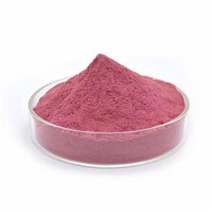 蓝莓果粉 斯诺特生物供应 水溶蓝莓粉