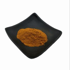 葡萄籽提取物供应  葡萄籽提取物 原花青素95%