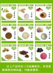 核桃仁提取物     核桃仁粉    食品