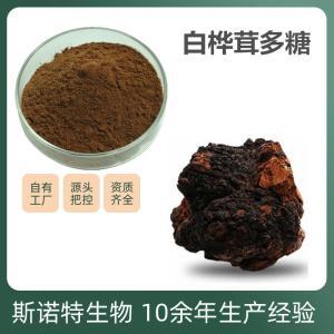 白桦茸多糖 俄罗斯进口桦褐孔菌提取