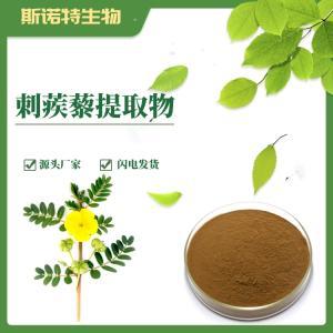 刺蒺藜提取物 供应 刺蒺藜皂甙20%-90%
