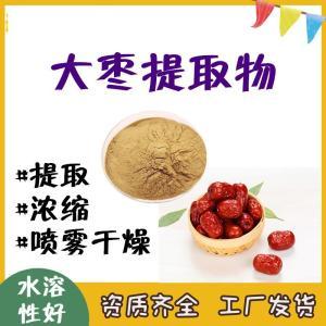 大枣提取物 工厂常年生产  大枣粉